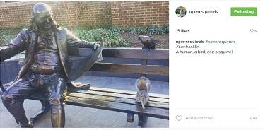 upennsquirrels2